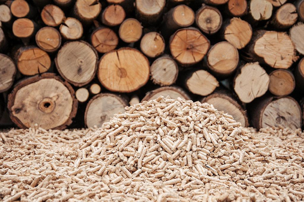 Das Haus zum Nulltarif (oder beinahe) heizen: So sparen Sie mit einem Holz- oder Pelletofen