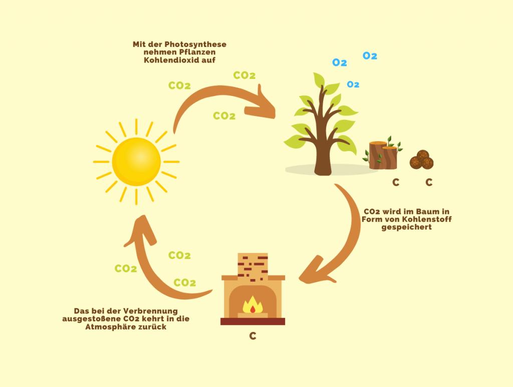Wie funktioniert eine Biomasse-Heizanlage?