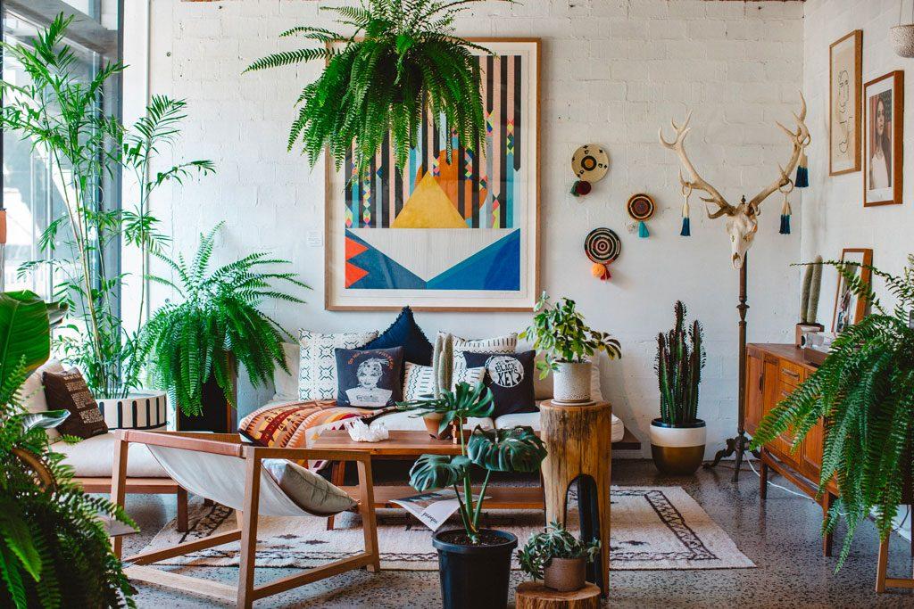 Green corner und Urban jungle: Bringen Sie mit Zimmerpflanzen die Natur in Ihre Wohnung
